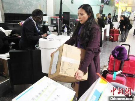 资料图:2月14日晚,旅居英国华人护士何彩霞辞去工作岗位,搭乘航班回国,奔赴中国抗击新冠肺炎疫情一线。 张平 摄