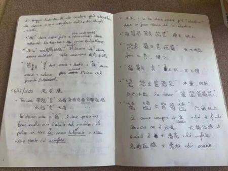 为了学琴记的笔记。受访者供图
