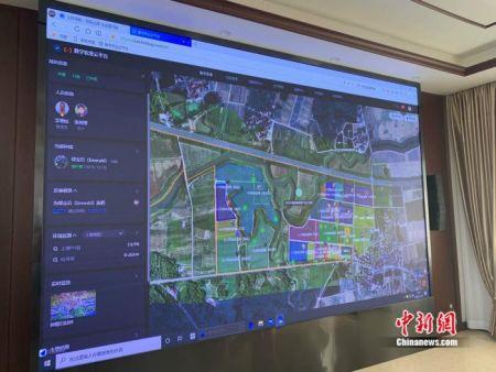 南京农高区数字农业云平台。 中新网 彭婧如 摄
