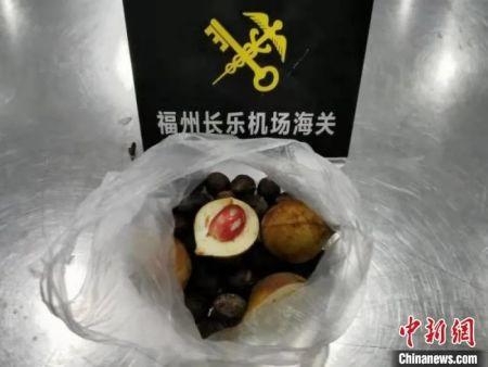 福州长乐机场海关截获的肉豆蔻种子。福州海关供图